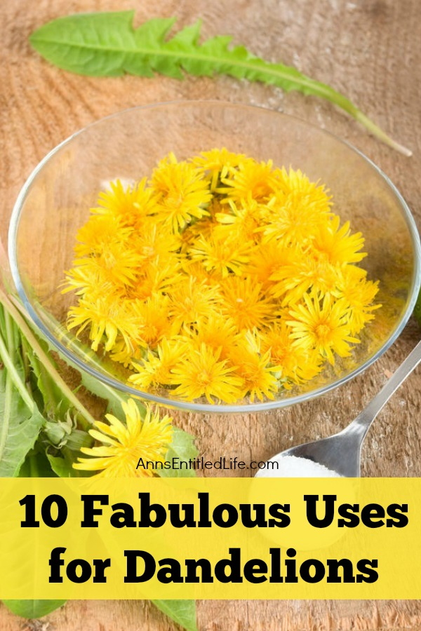 A clear bowl filled with dandelions on a wooden board. Fresh dandelions lay in front of it, a spoon next to them.