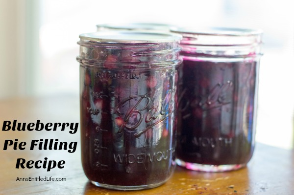 Blueberry Pie Filling Recipe. Make your own blueberry pie filling with this tasty, easy to make blueberry pie filling recipe. These simple step by step instructions will make your blueberry canning a breeze! Make blueberries pies, blueberry crumbles, bars and more using a delicious homemade blueberry pie filling that you made yourself.