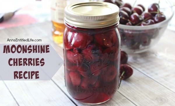 Moonshine Cherries Recipe. Moonshine cherries, also called cherry bombs and spiked cherries are a great adult snack, or wonderful for dressing up a cocktail or dessert. This easy recipe can be stored in your refrigerator, or canned for shelf stable storage. These moonshine cherries also make wonderful gifts. Make some moonshine cherries today. Your taste-buds will thank you!