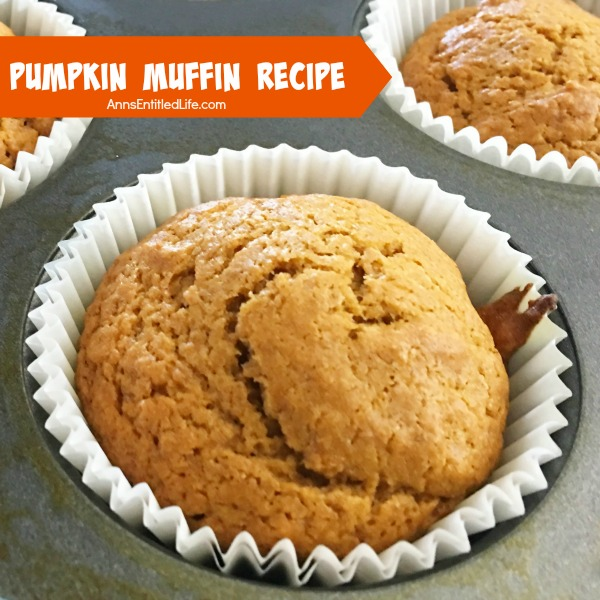 Pumpkin Muffins Recipe. These easy to make Pumpkin Muffins are so good! A soft, spicy, delicious pumpkin muffin recipe that will have your family asking for more. Enjoy these pumpkin muffins for breakfast, lunch, dinner or as a snack. Yum!