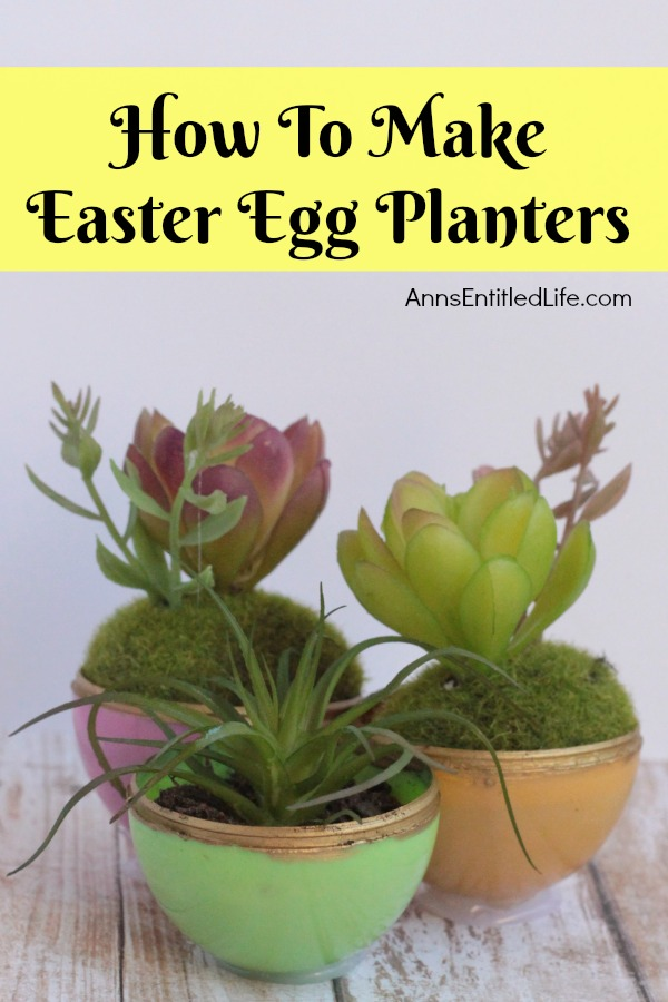 How to Make Easter Egg Planters. Are you looking for a cool succulent planters craft that can be made by adults and children alike? This easy egg planter idea is a fun Easter kids crafts (two variations), as well as a wonderful, simple to make adult Easter craft.  So use up those old plastic eggs and make some fun egg shaped planters!
