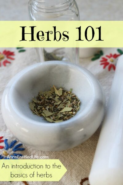 Herbs 101 – An introduction to the basics on herbs