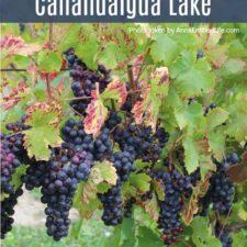 Wine Tasting On Canandaigua Lake