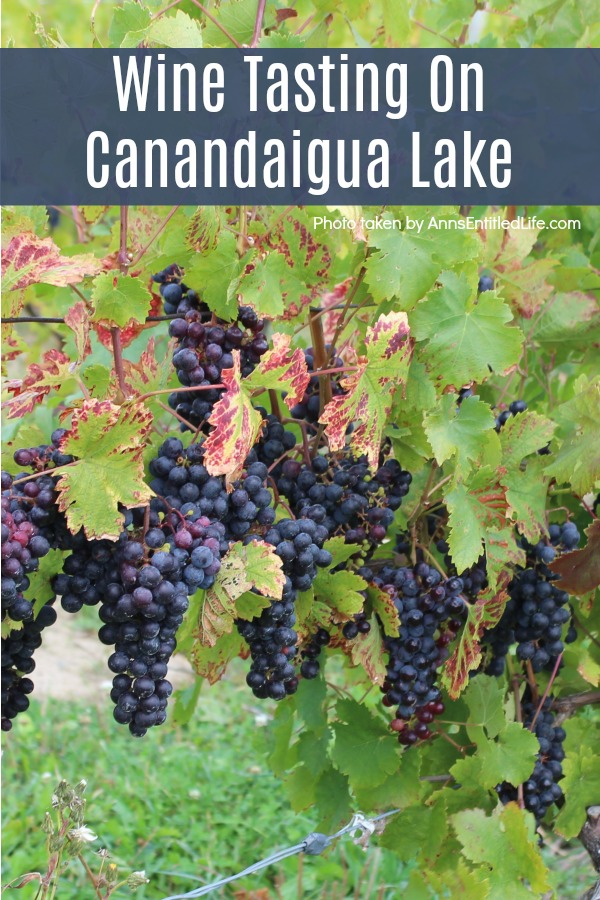 Wine Tasting On Canandaigua Lake. Our Wine Tasting On Canandaigua Lake experience! Canandaigua Lake is one of the Finger Lakes in the west-central section of New York State. The Finger Lakes Wine Country is home to almost 100 wineries, breweries and distilleries centered around Canandaigua, Keuka, Seneca, and Cayuga lakes.