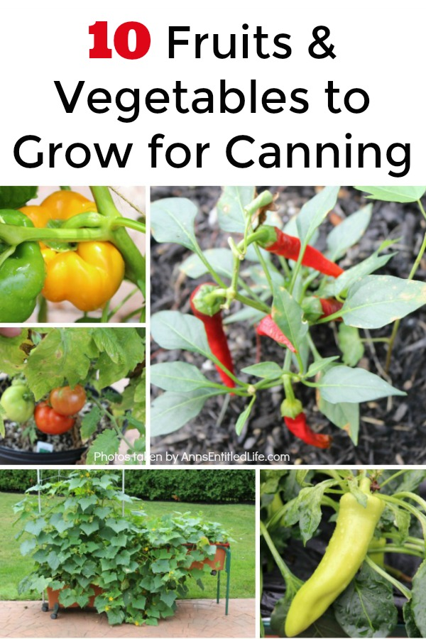 10 Fruits and Vegetables to Grow for Canning. When planning your garden you may be looking for the best foods to grow for canning. Canning fruits and vegetables is a great way to save money and provide your family with wholesome foods year round. When choosing what you will grow in your canning garden you need to look for the items your family goes through the most.