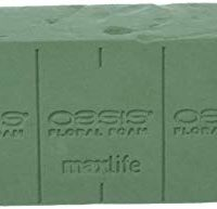 Oasis Pack of 6 Standard Floral Foam Bricks