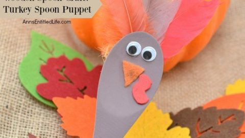 Wooden Spoon Craft: Turkey Spoon Puppet