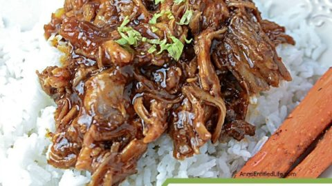 Slow Cooker Recipe: Root Beer Barbecue Pulled Pork