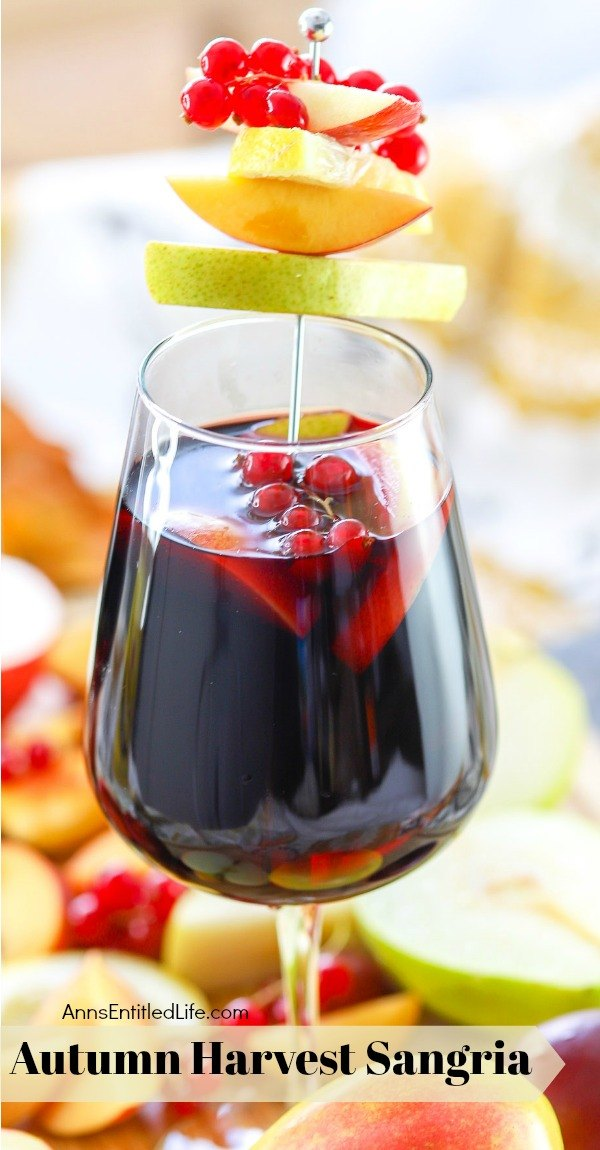 picture of a glass of autumn sangria garnished with red current, apples, pears on a sliver pic, on top of a bed of cut fall fruit