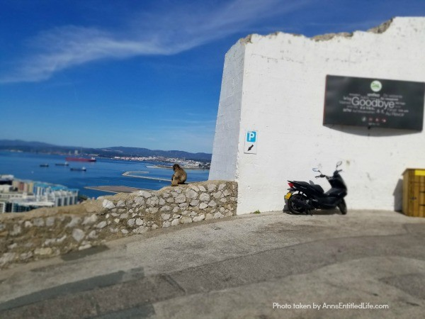Three Weeks in Costa del Sol, Spain. Interested in taking a vacation to Spain? It is a beautiful country filled with wonderful food, magnificent vistas, and amazing beaches. This is a recap of our fabulous trip to the Spanish area of Costa del Sol.
