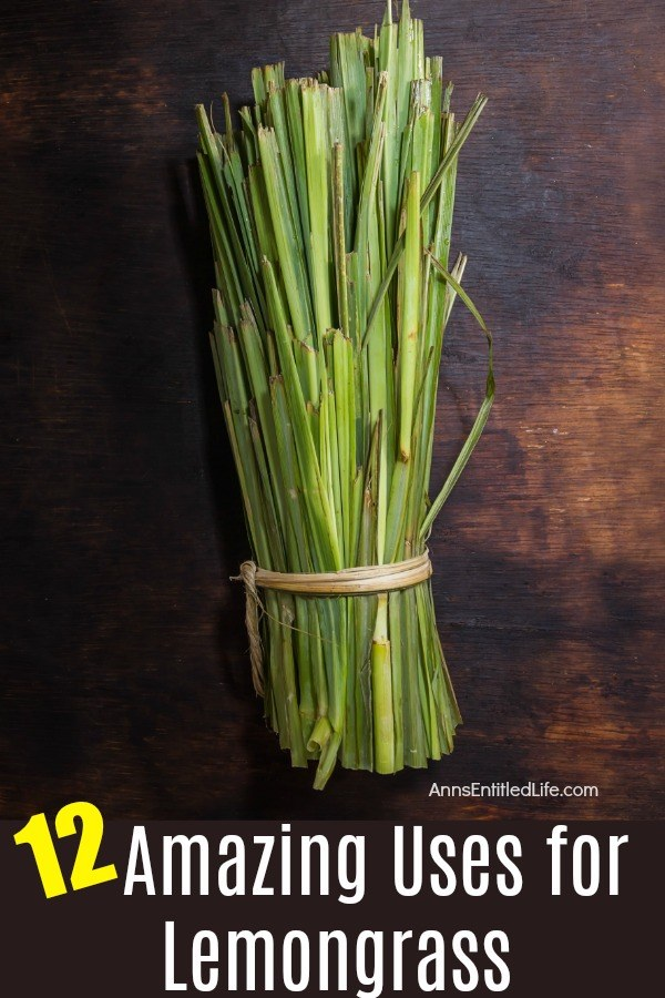 a bundle of cut lemongrass tied with a twine, on a dark brown background