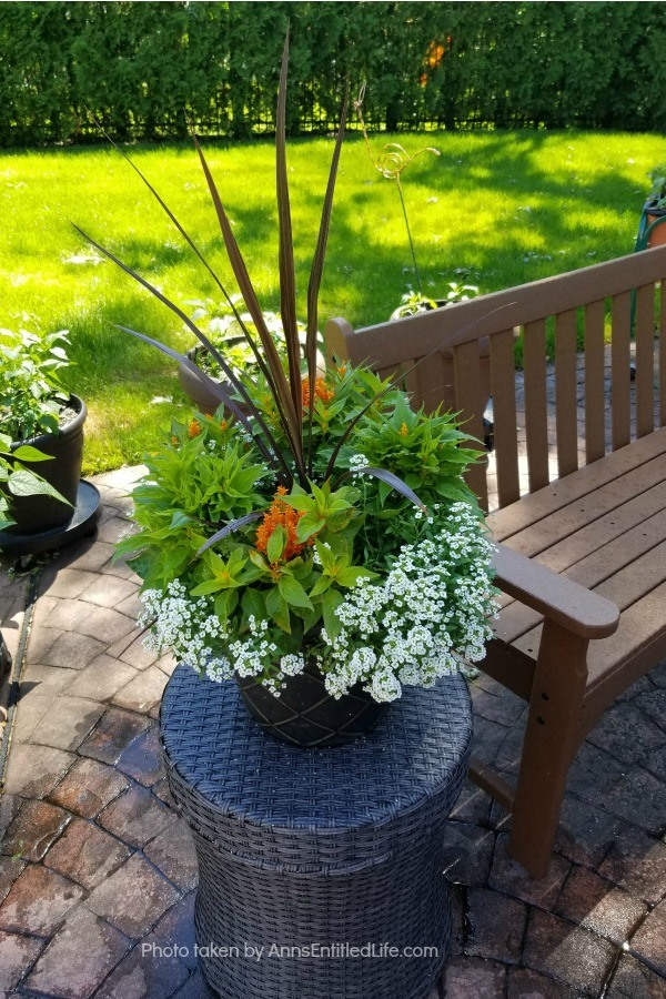 Backyard Patio Oasis. This is our backyard patio oasis. It is where we can go to relax on a beautiful summer day. Entertaining is a breeze with the three different seating areas, and I still have a patio container garden!