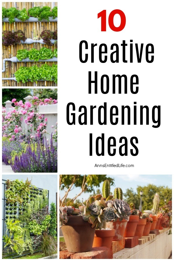A collage of four photos showing various ways to garden in the backyard
