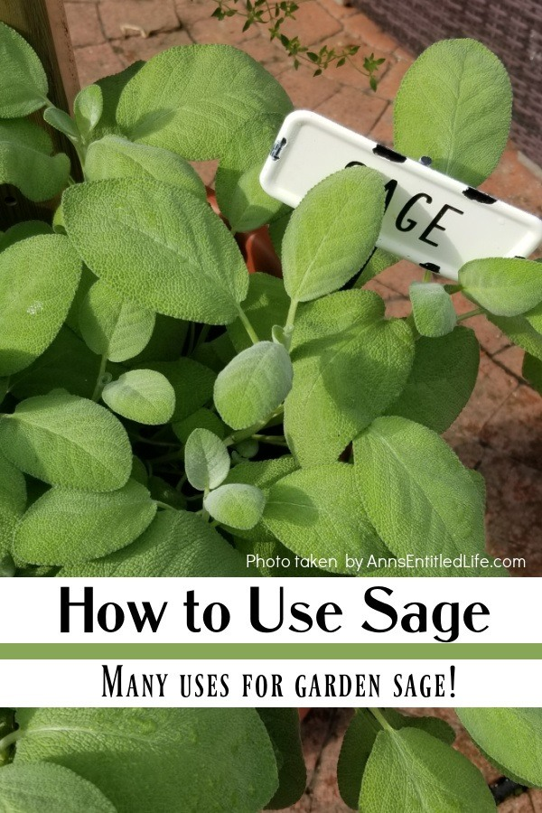 A pot of sage growing at the bottom of an herb tower