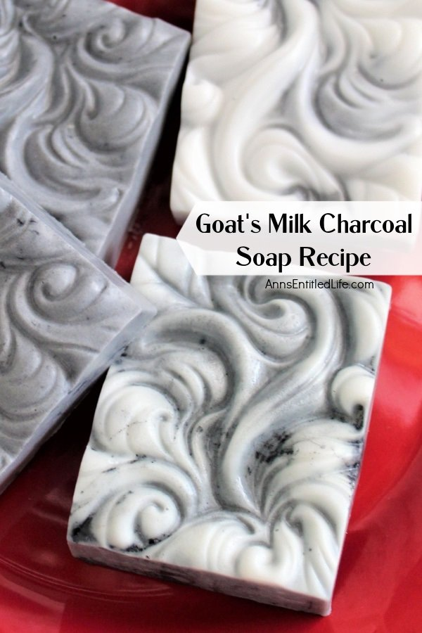 Up-close image of 4 bars of goat's milk charcoal soap on a red plate